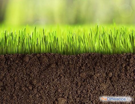 чем отличается земля от почвы