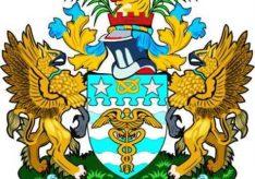 Разница между гербом и флагом