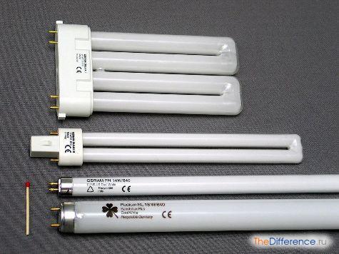 отличие лампы накаливания от лампы люминесцентной