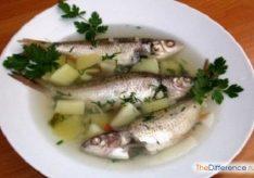 Разница между ухой и рыбным супом