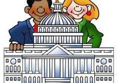 Разница между политическими и общественно-политическими организациями