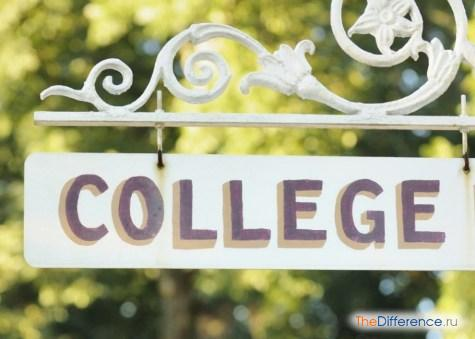чем отличается колледж от института