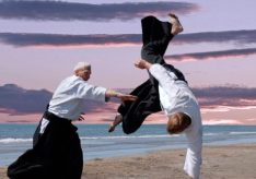 Разница между айкидо и карате