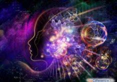 Разница между диалектикой и метафизикой