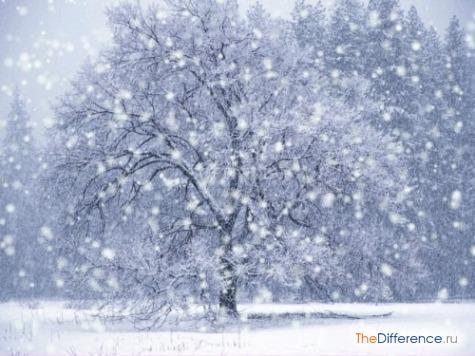 чем отличается снег от дождя