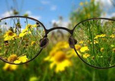 Разница между близорукостью и дальнозоркостью