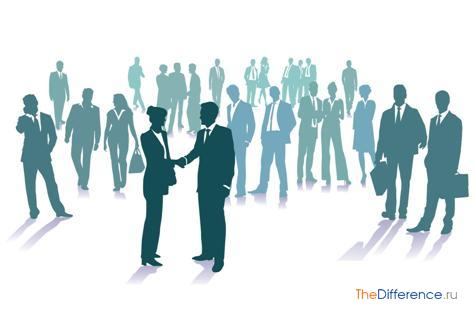 Чем отличается общество от организации