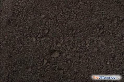 Чем отличается почва от горной породы