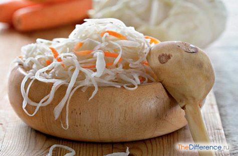 Чем отличается соленая капуста от квашеной