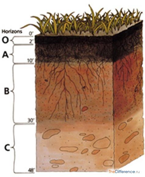 разница между почвой и горной породой
