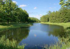 Разница между экосистемой и биосферой