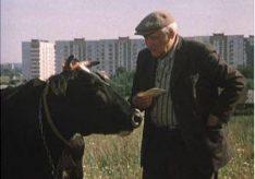 Разница между городским и сельским образом жизни