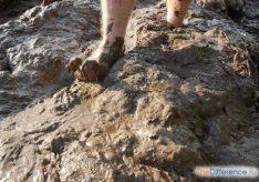 Разница между грязью и пылью