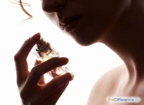 чем отличается парфюм от духов