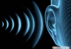 Разница между звуком и фонемой