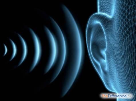 чем отличается звук от фонемы