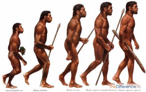 отличие современного человека от древнего человека
