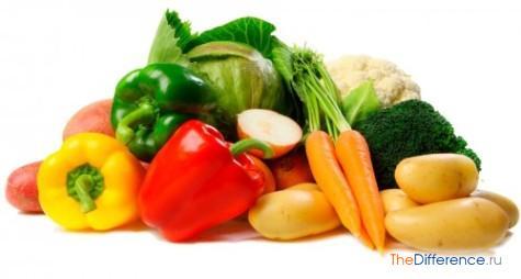 отличие ягоды от овощей