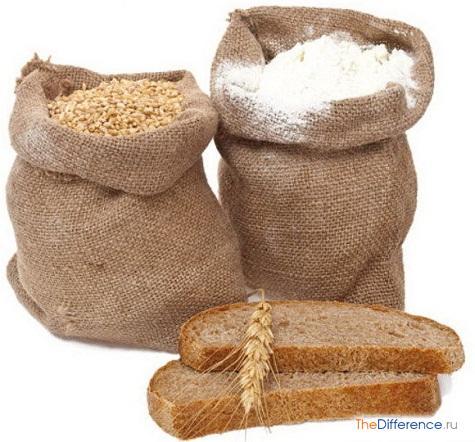 чем отличается мука ржаная от пшеничной