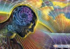 Разница между психикой и сознанием