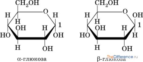 Чем отличается сахароза от сахара