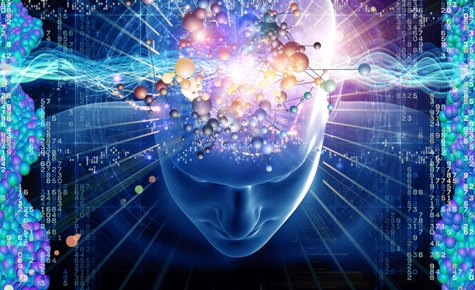 отличие паранойи от шизофрении