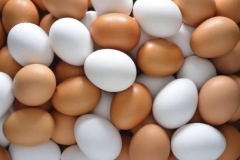 азница между белыми яйцами и коричневыми